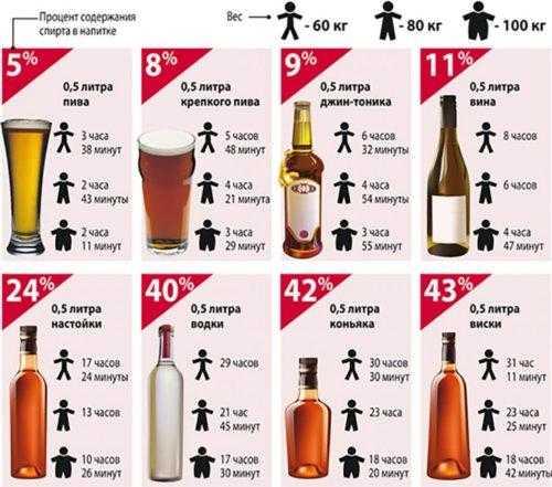 Скорость выведения алкоголя